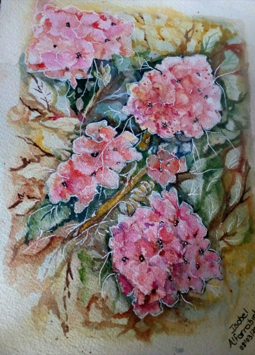 Sardinheira rosa